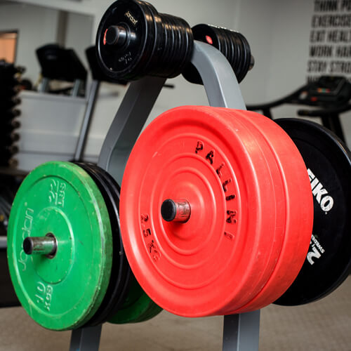 Weights in YSJ Fitness suite